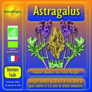 astragale